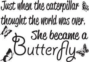 Caterpillar Butterfly Walll Quote
